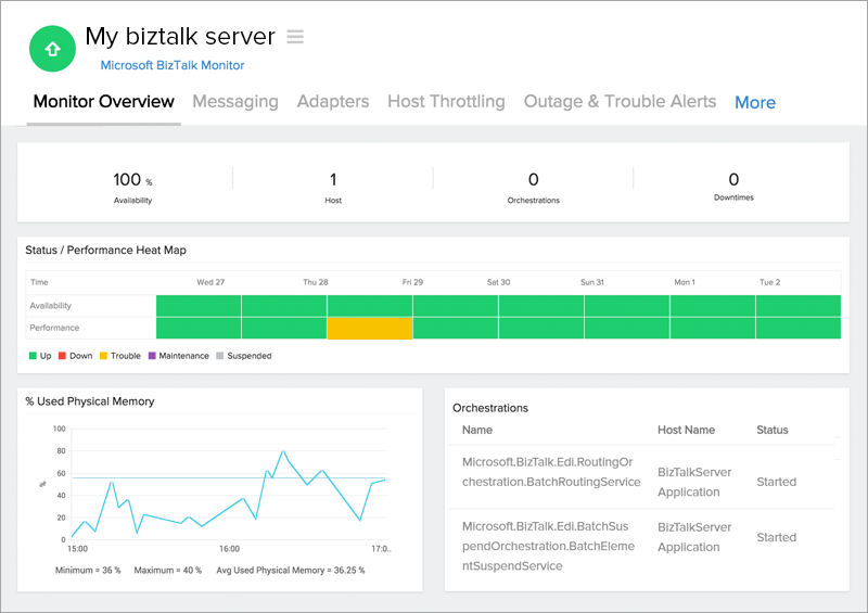 BizTalk Monitor Overview